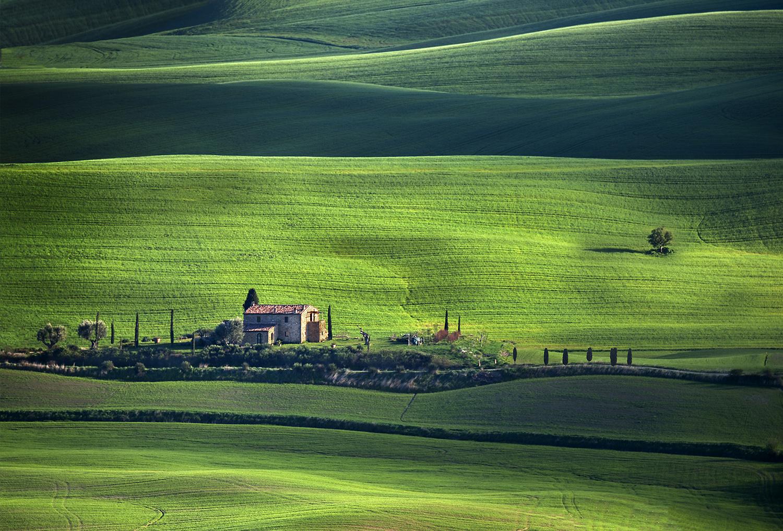 In un mondo verde...