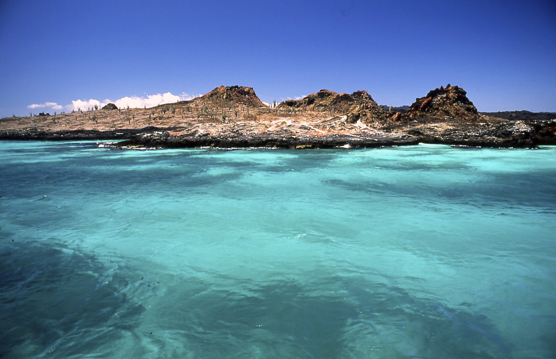 The colors of water - Galapagos...