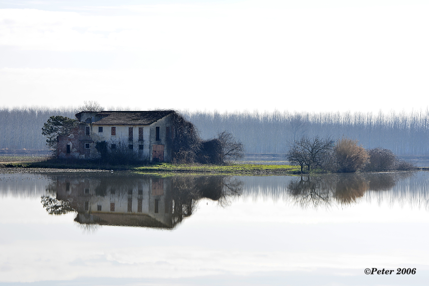 the farmhouse reflections...