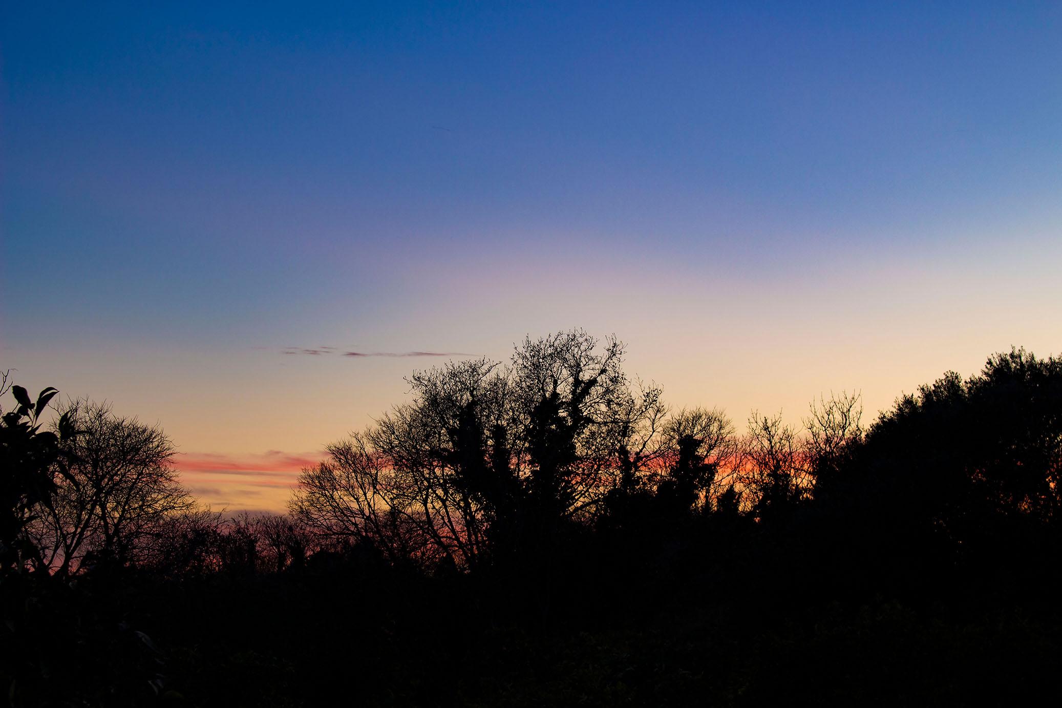sunset2...
