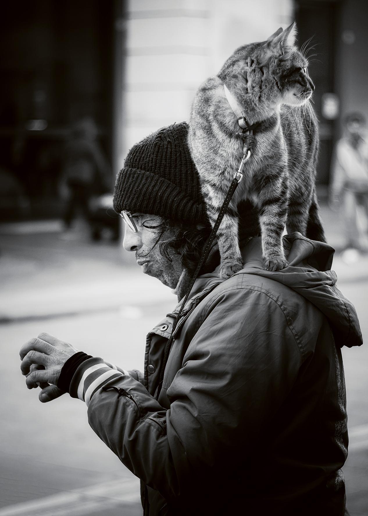 Istinto animale...