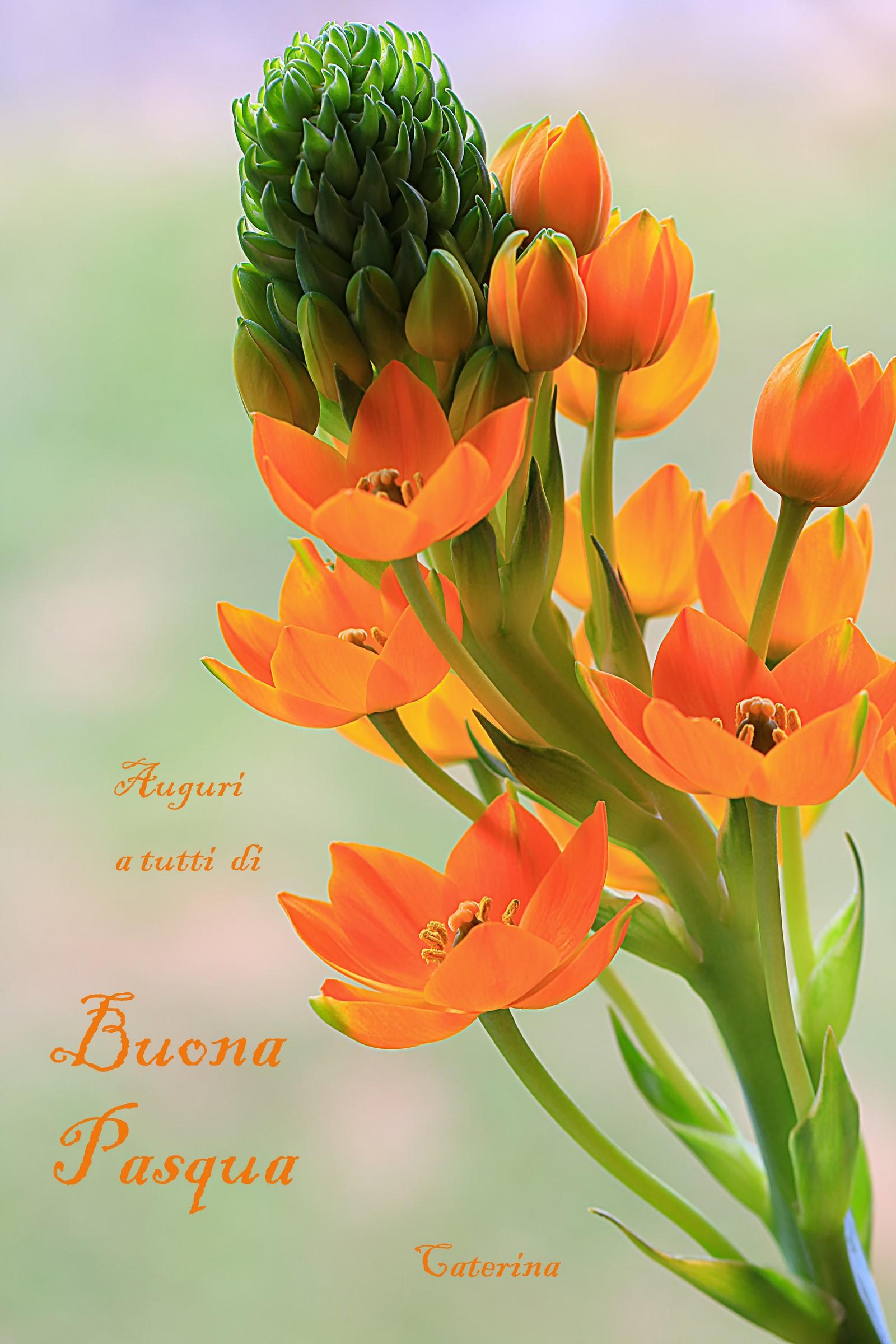 Best wishes!...