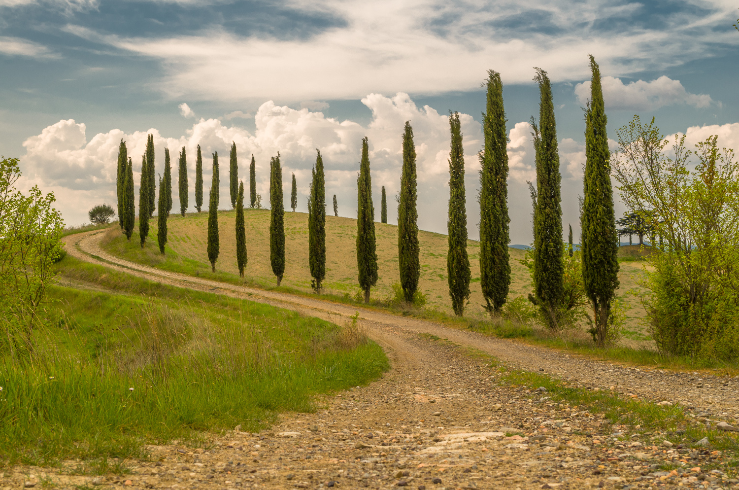 The Via Francigena in the Val d'Orcia...