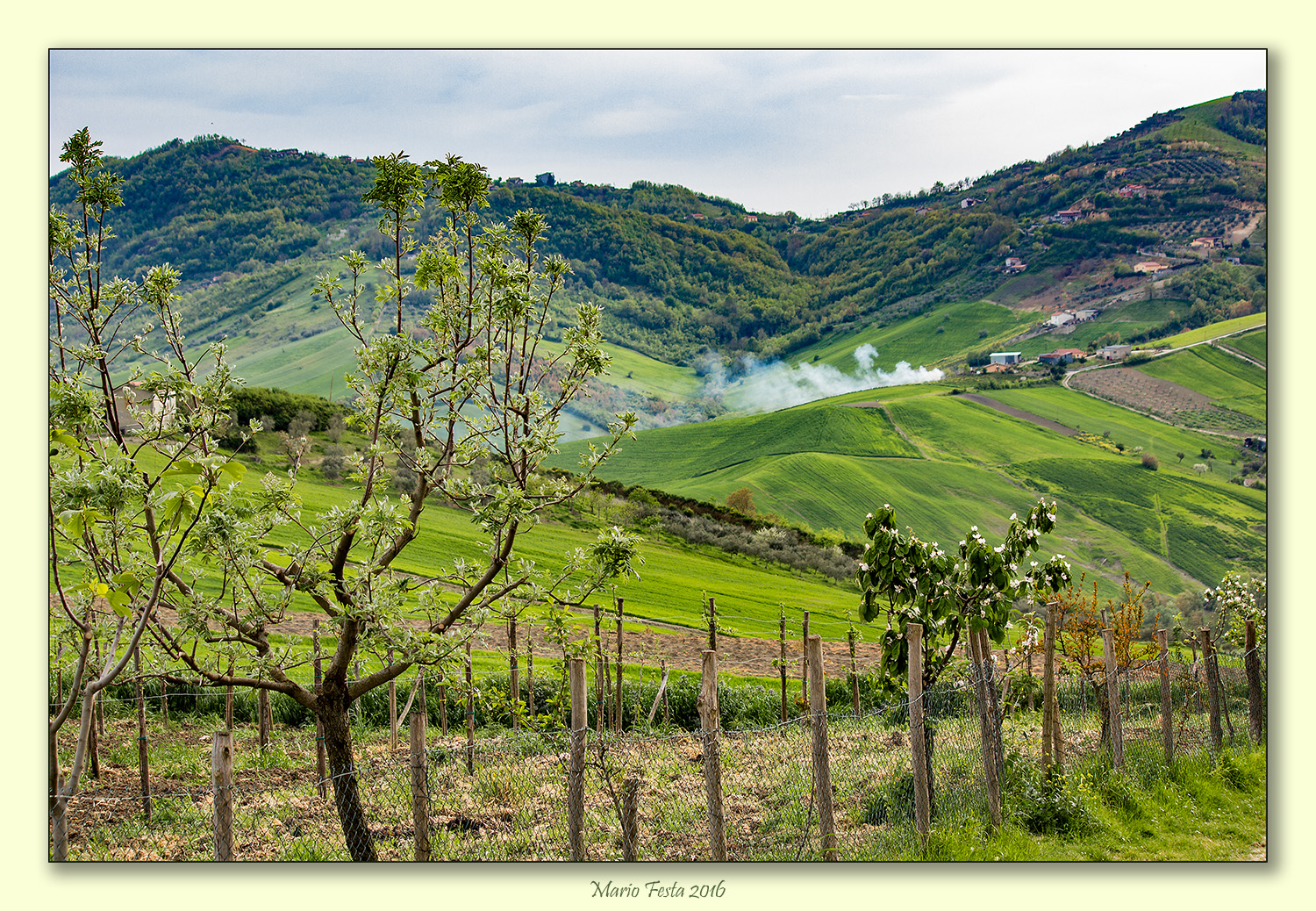The green hills of Irpinia...