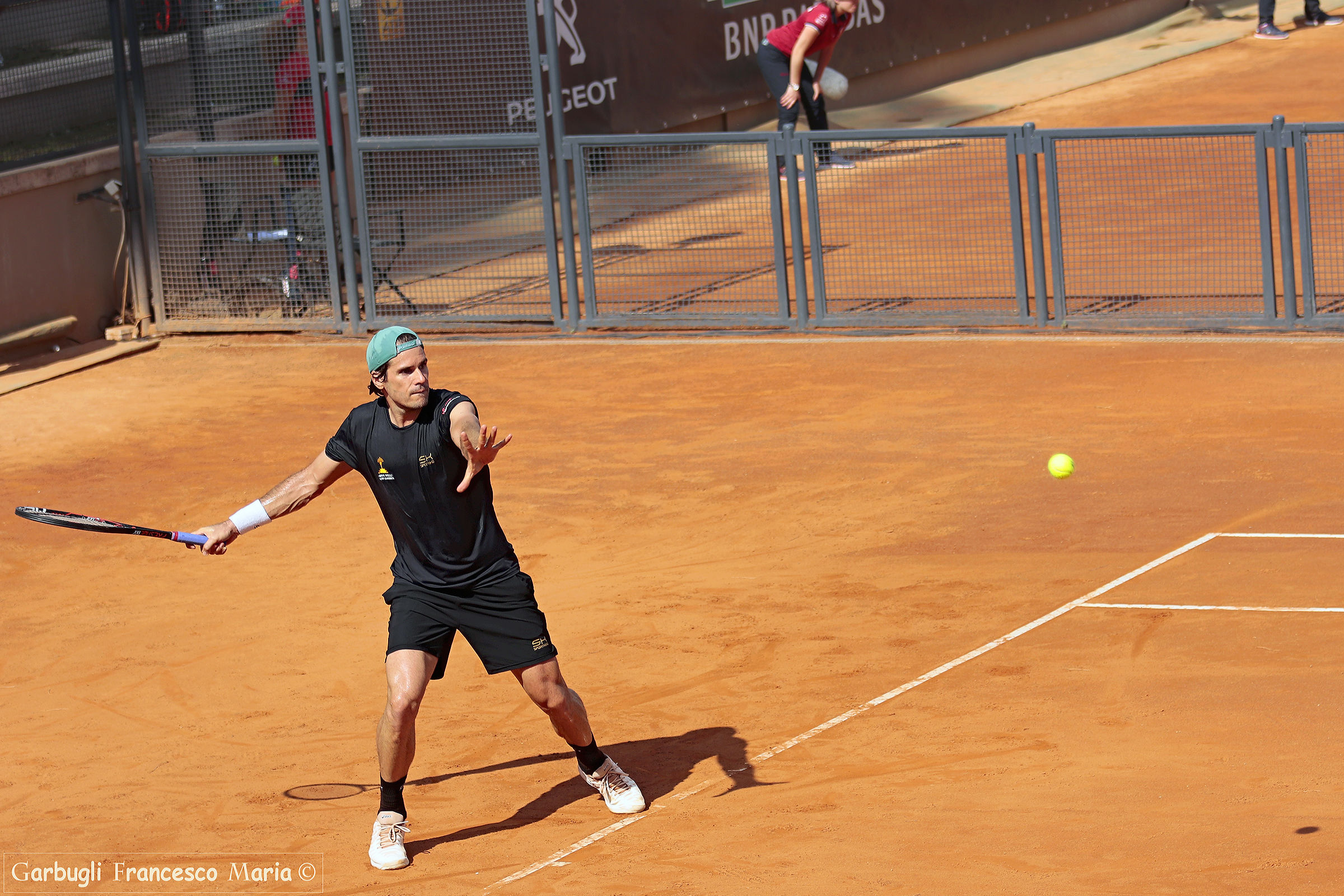 Tommy Haas ......... the old warrior...