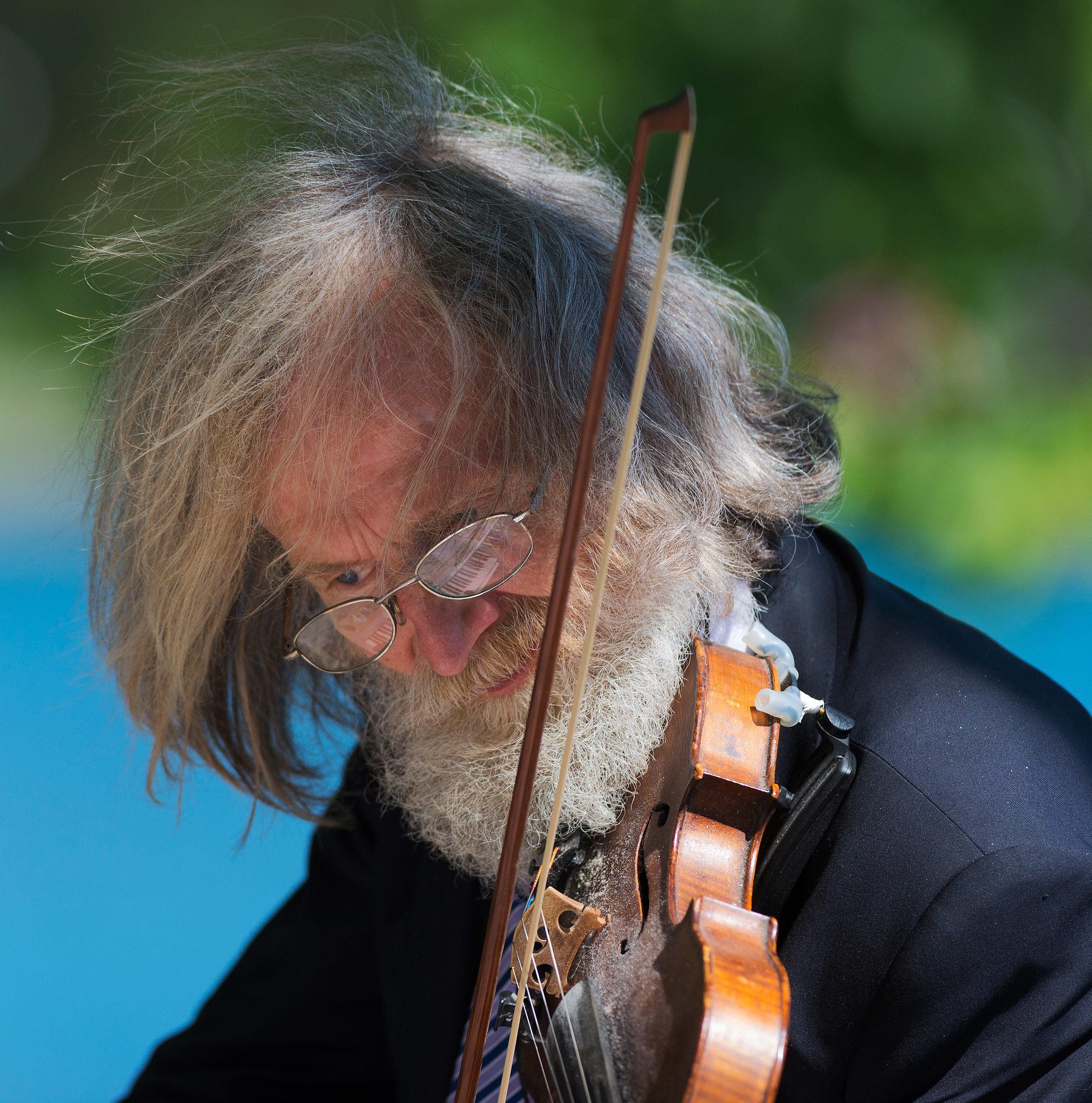 Il musicista...