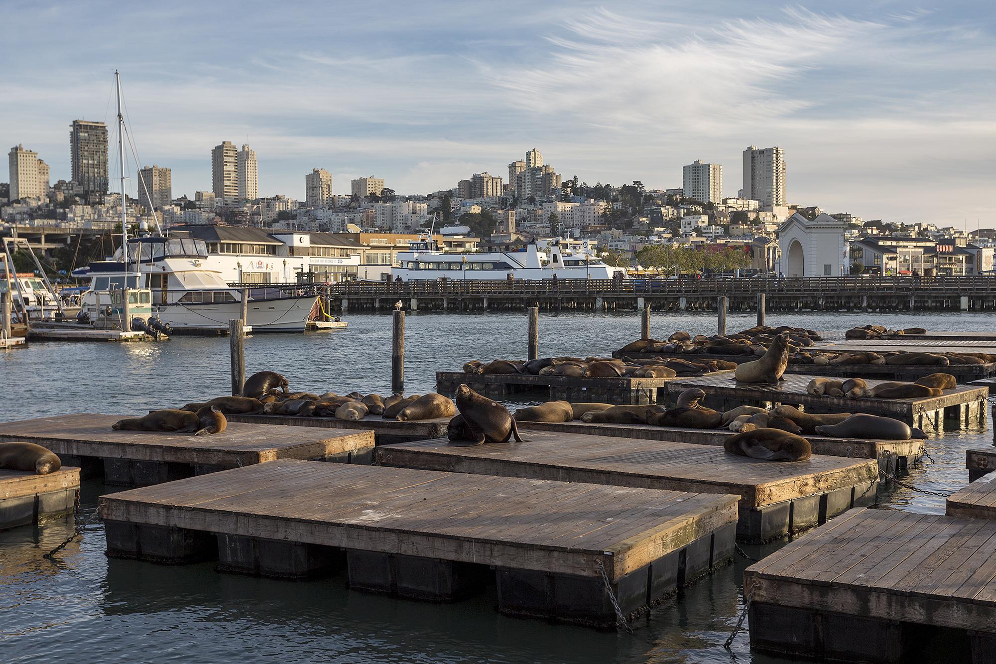Fisherman's wharf...