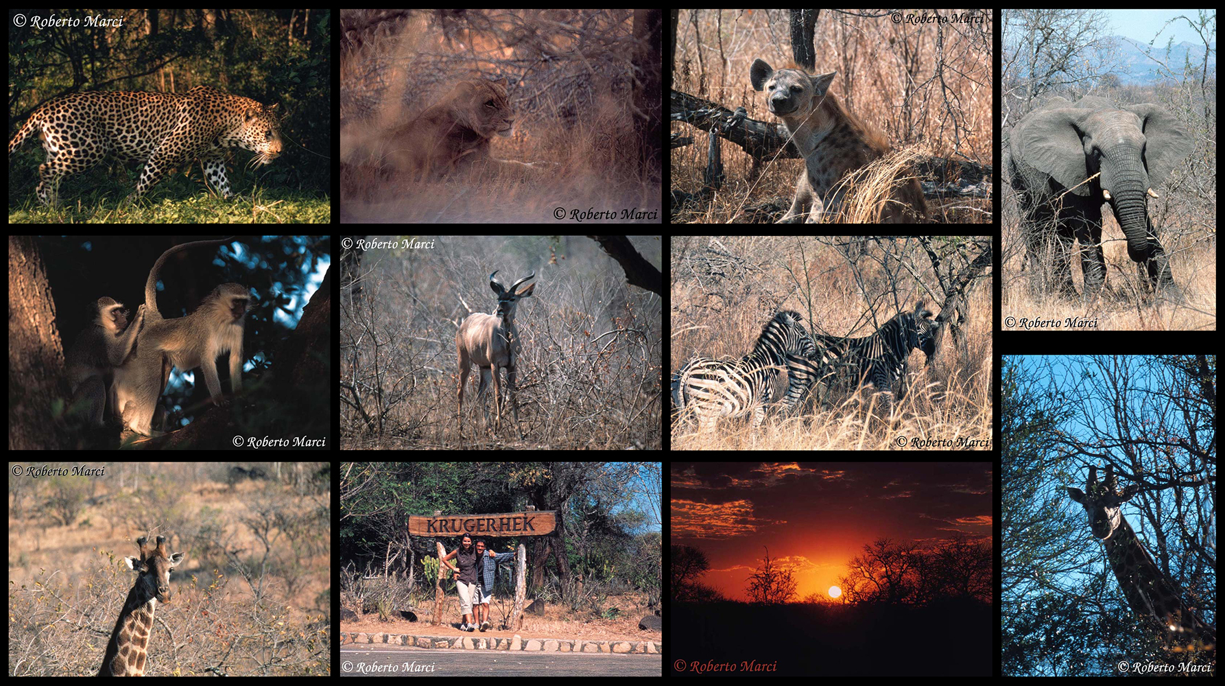 South Africa - Krugerhek - 2002...