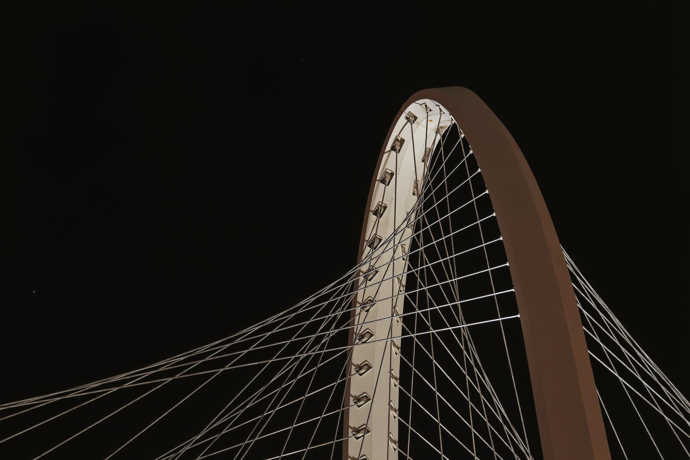 Calatrava Bridge...