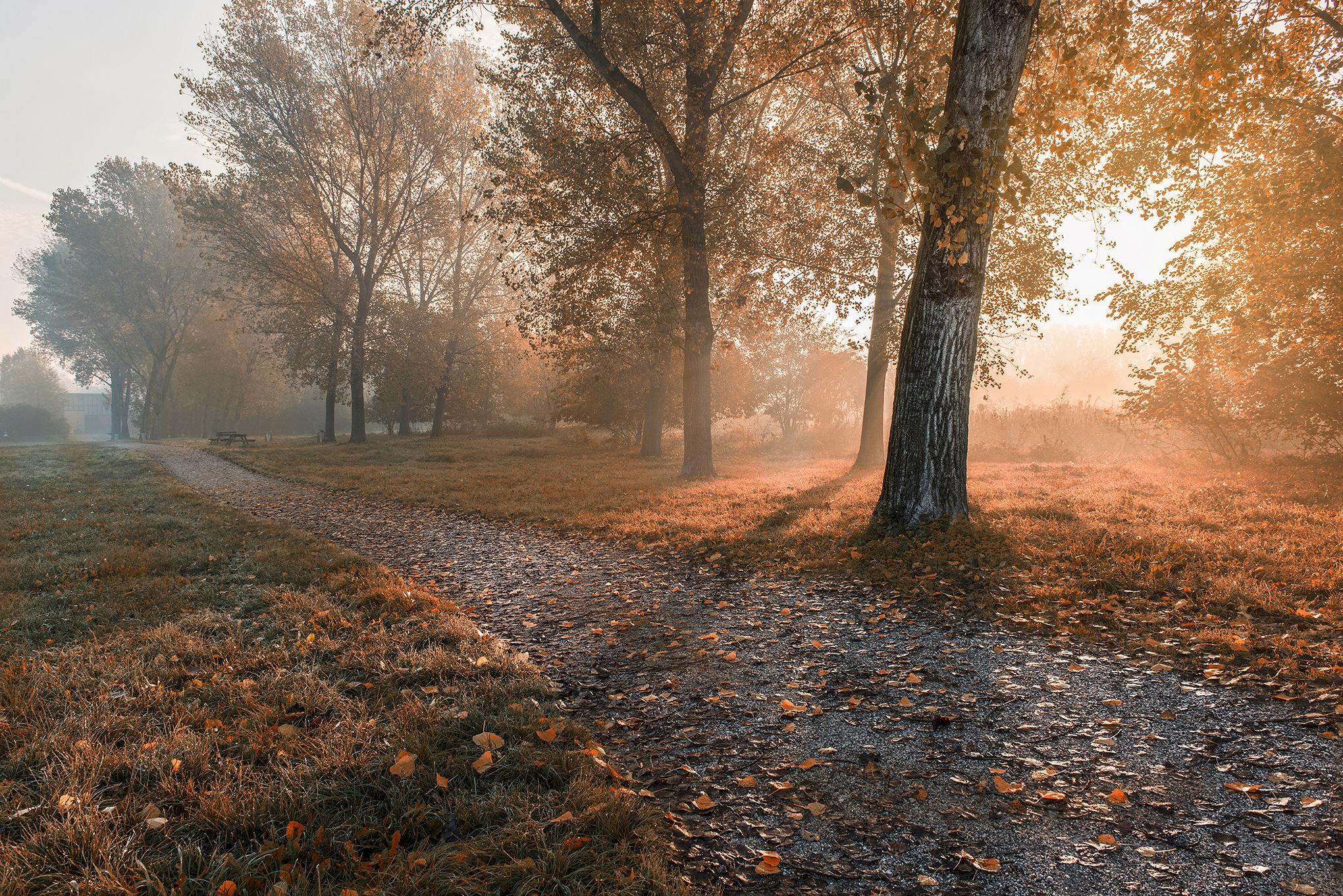 © Alba Mantova Park...