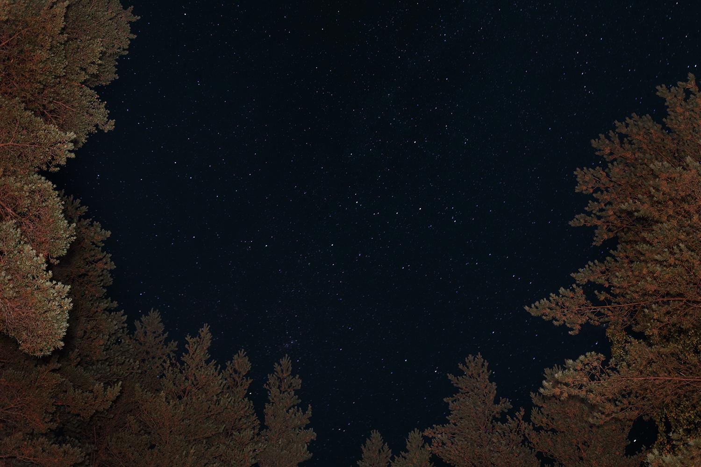 Starry night...