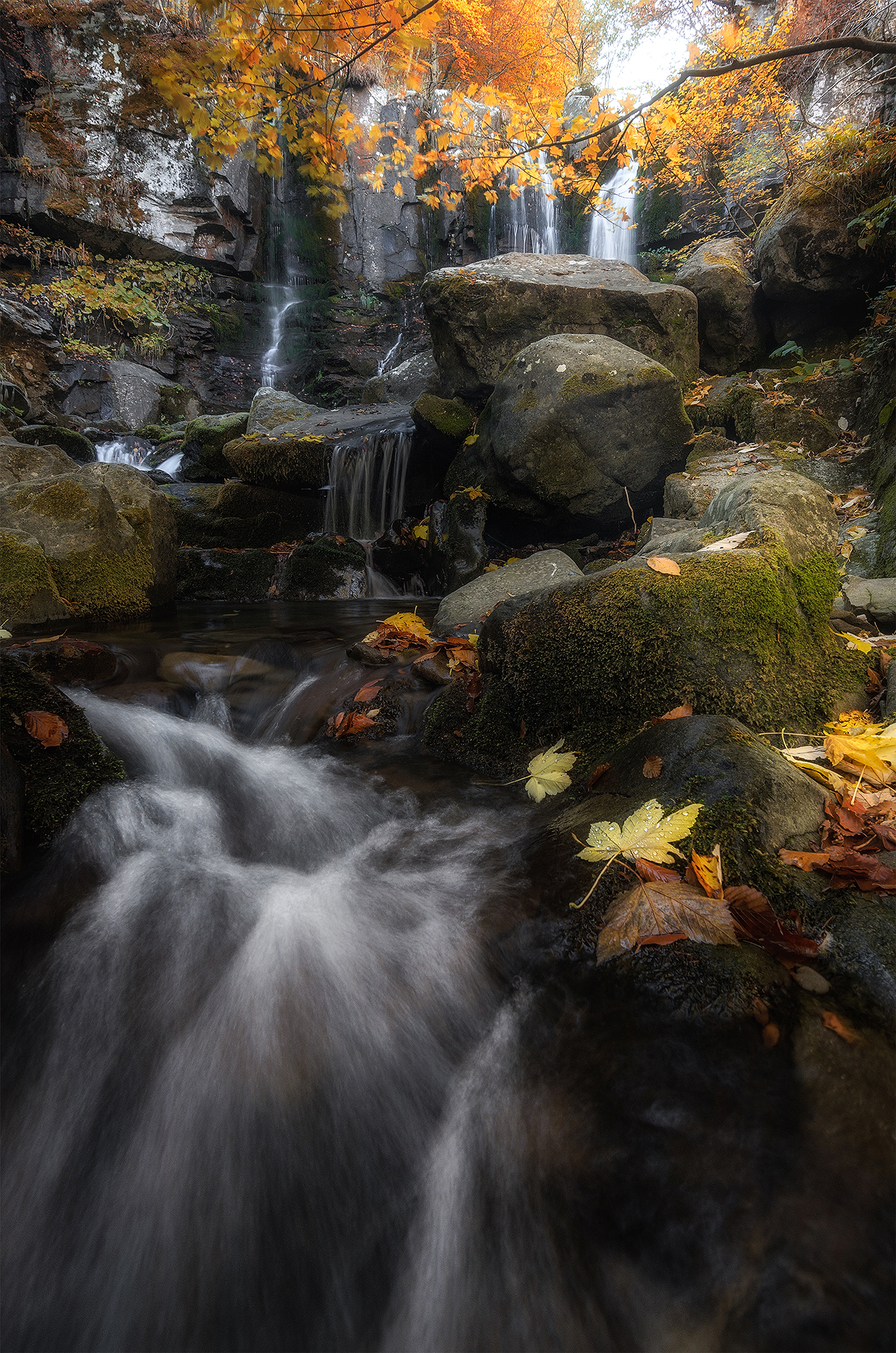 La magia dell'autunno...