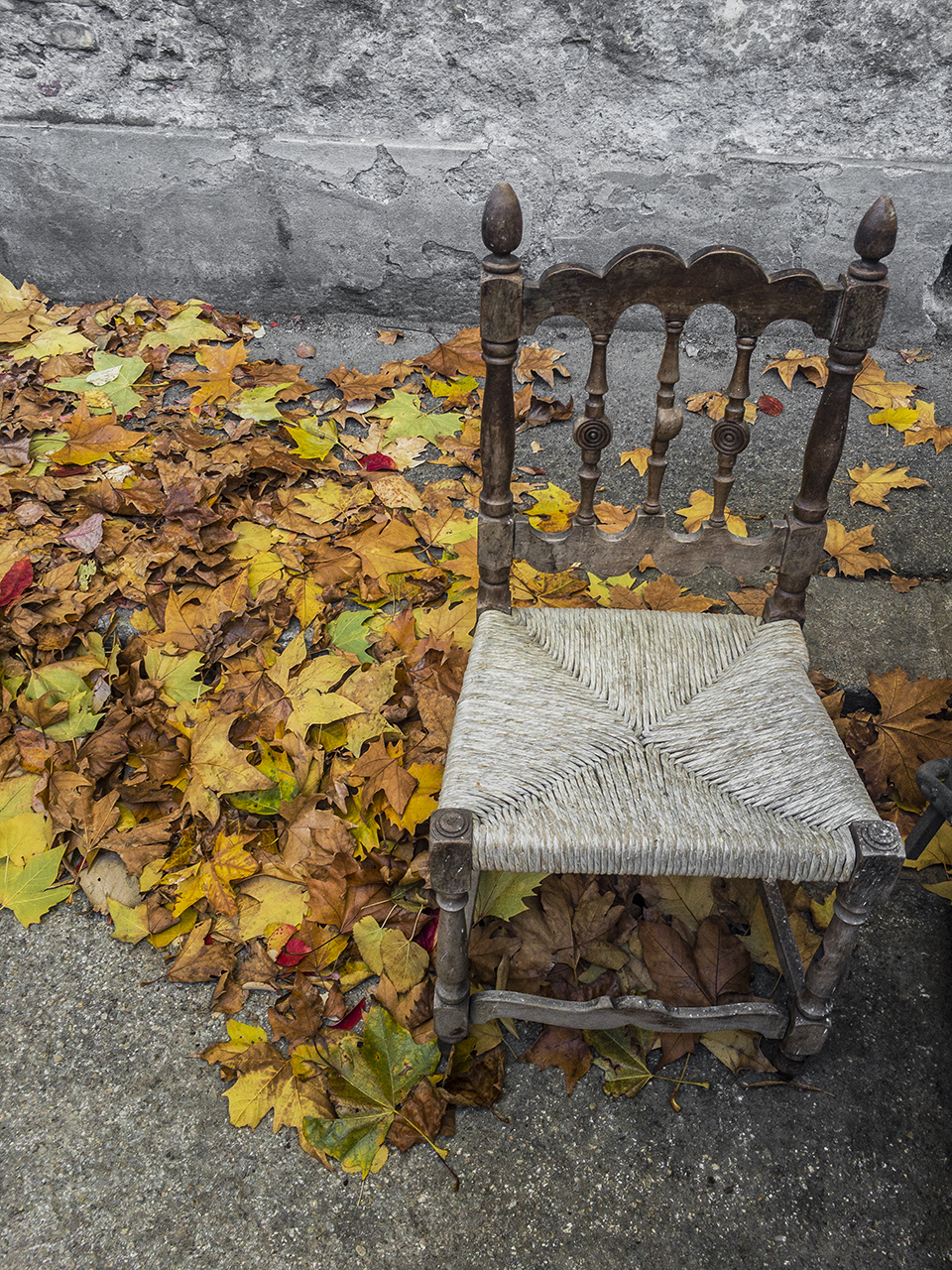 Autumn chair...