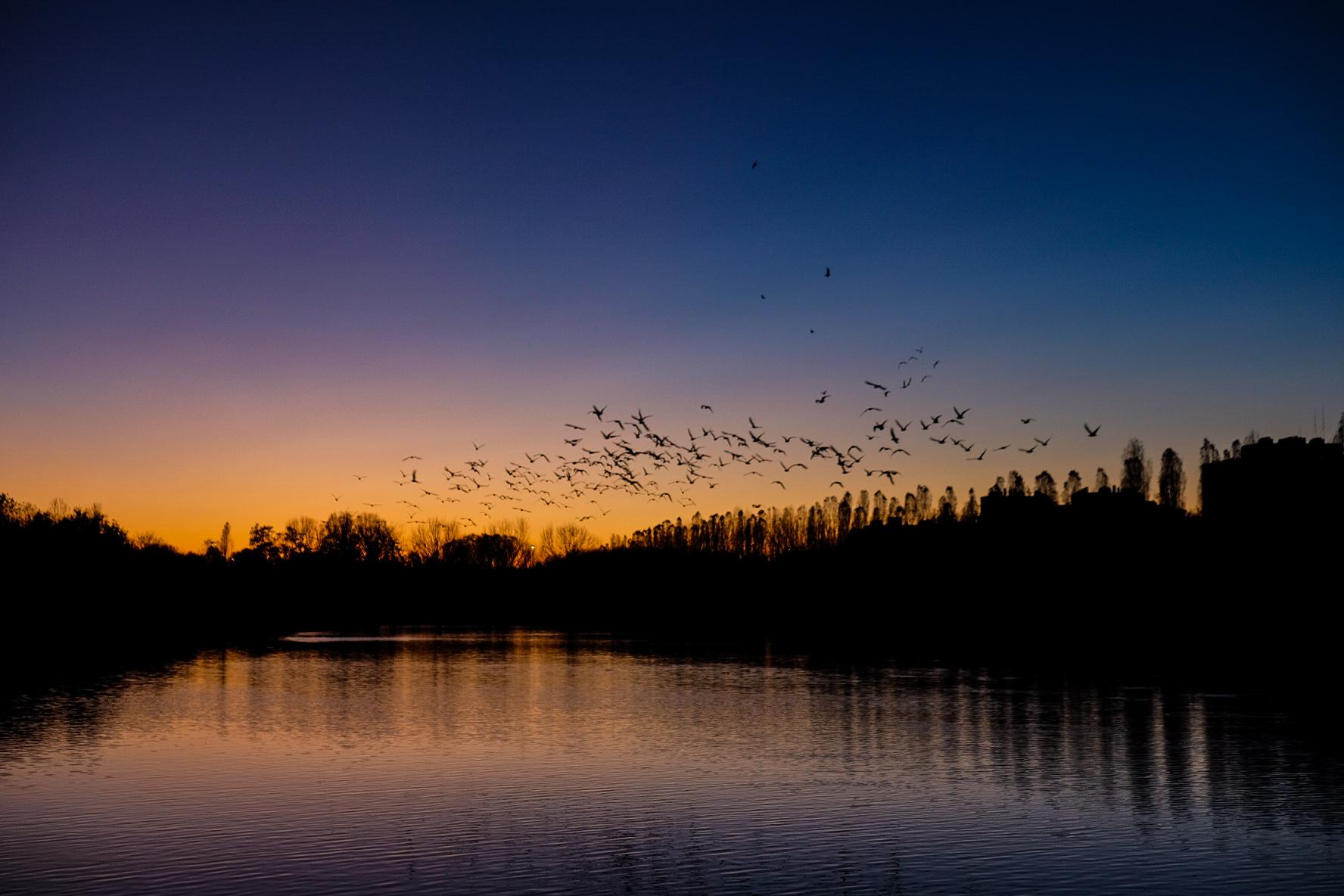north park sunset...