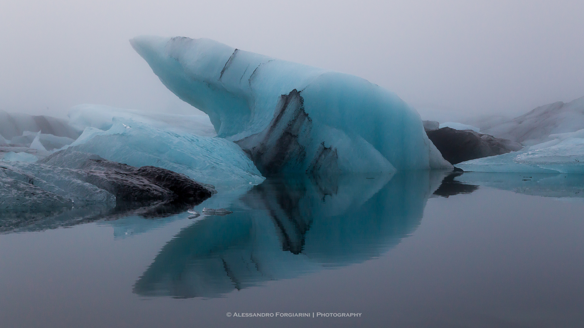 Iceberg Fish...