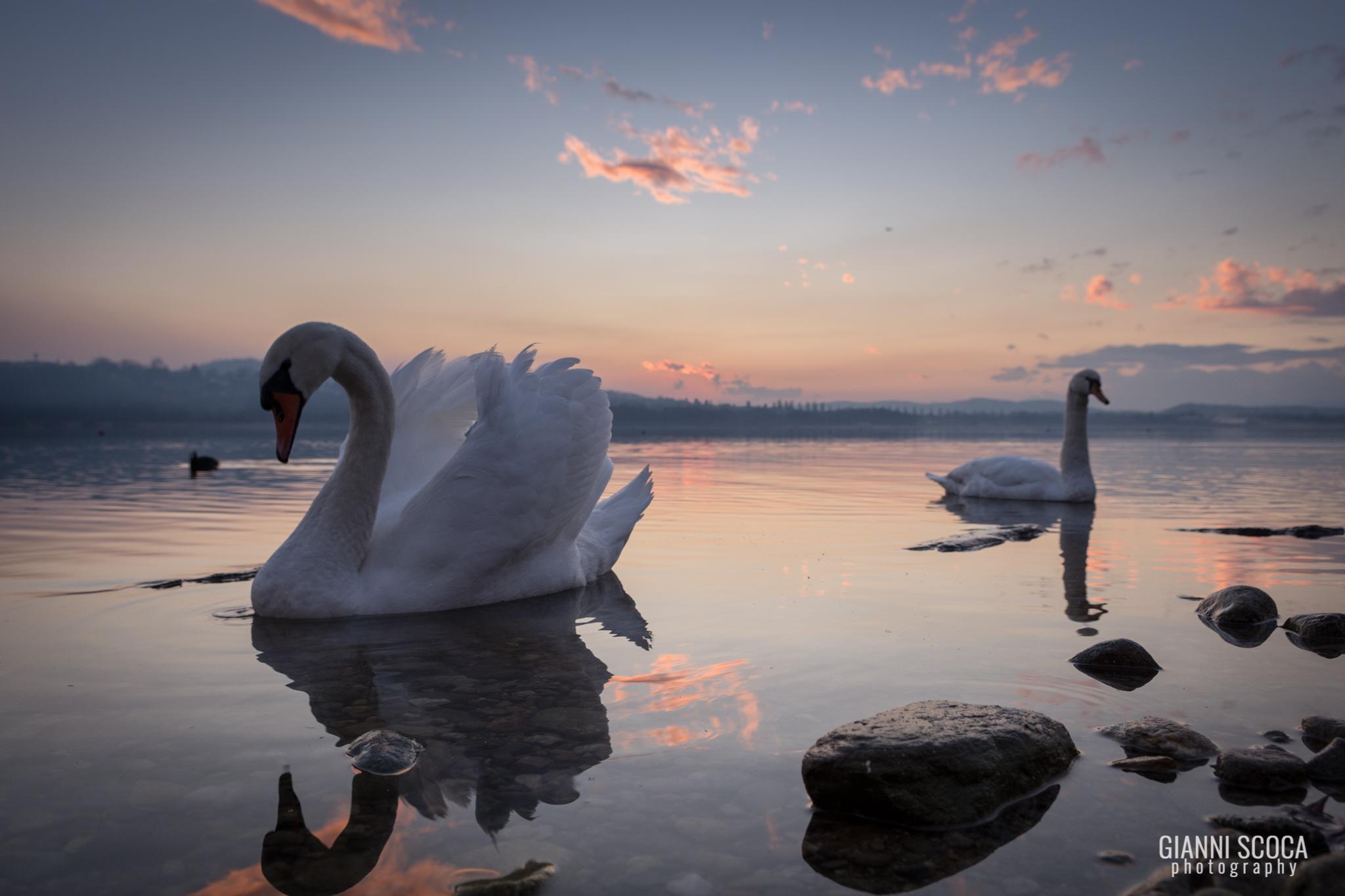 Lake of Varese...