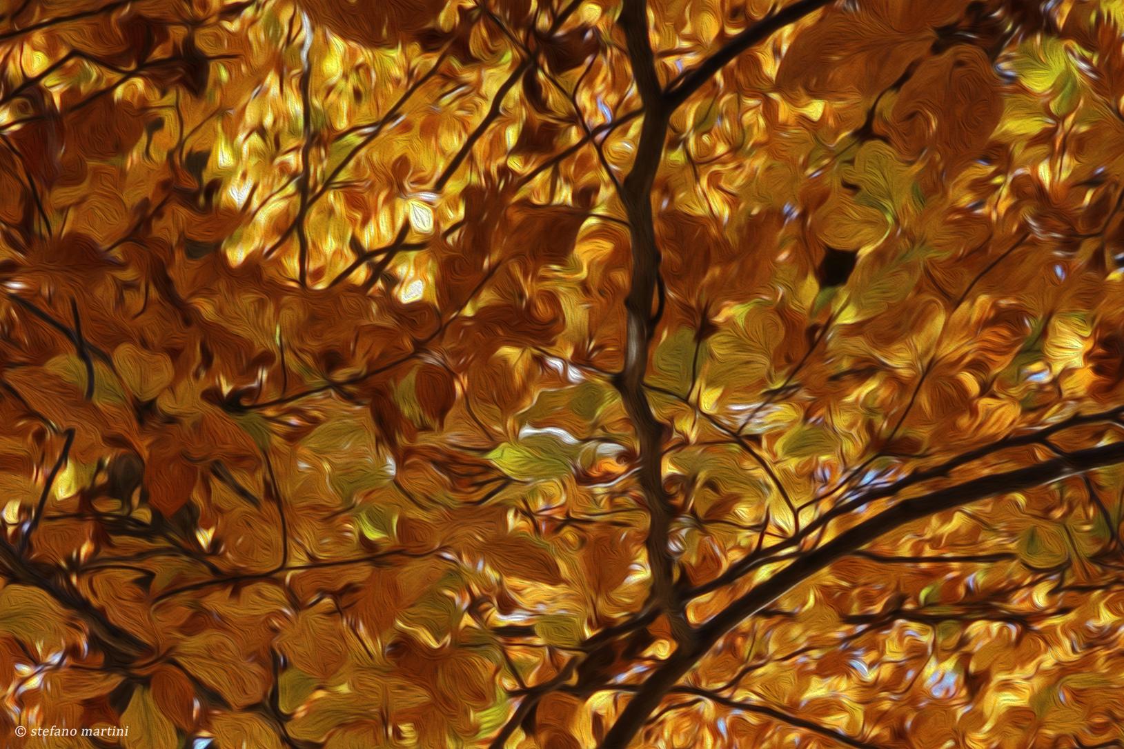 Gioco d'autunno...