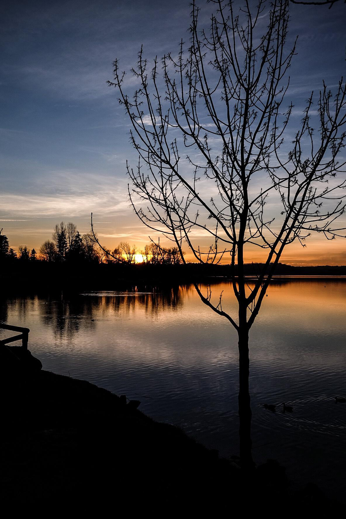 sunset on the lake of Pusiano...