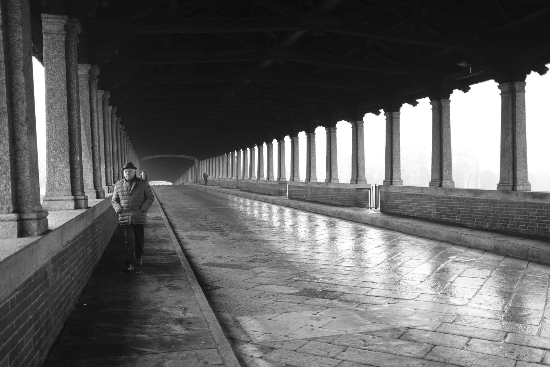 Pavia, the covered bridge...