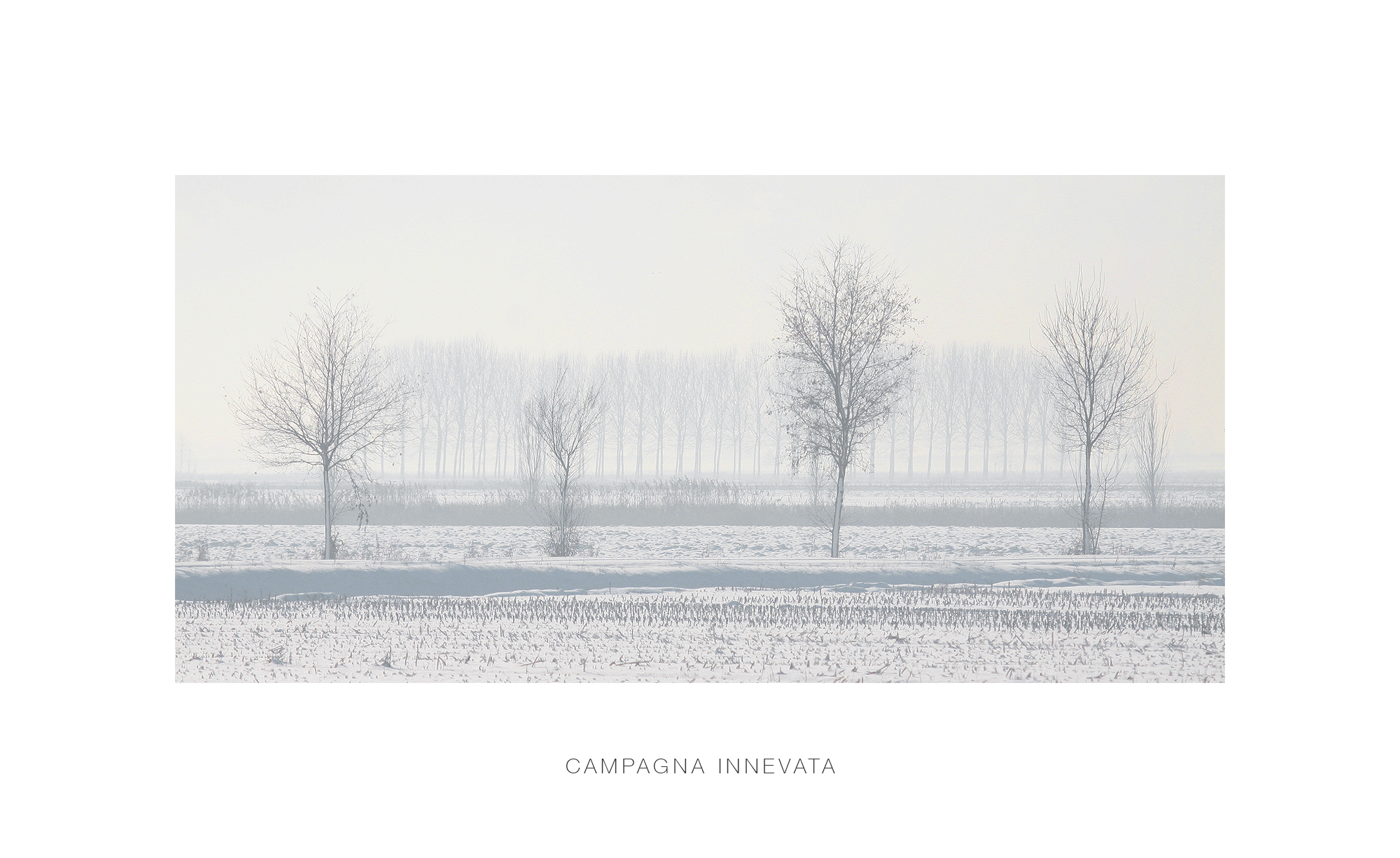 Snowy countryside...