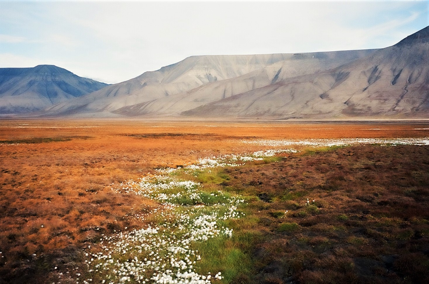 The colors of Svalbard...