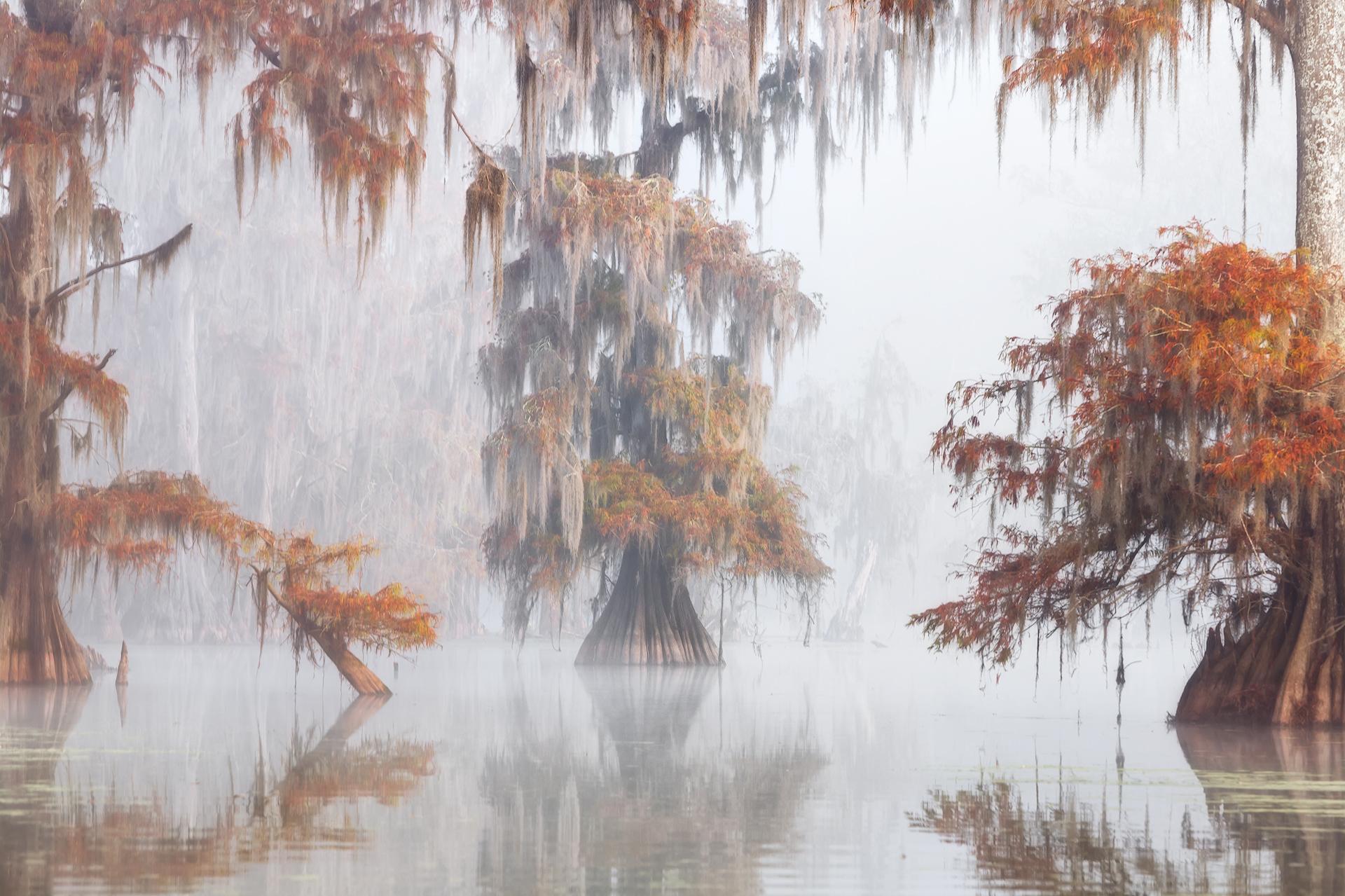 Misty Bayou...