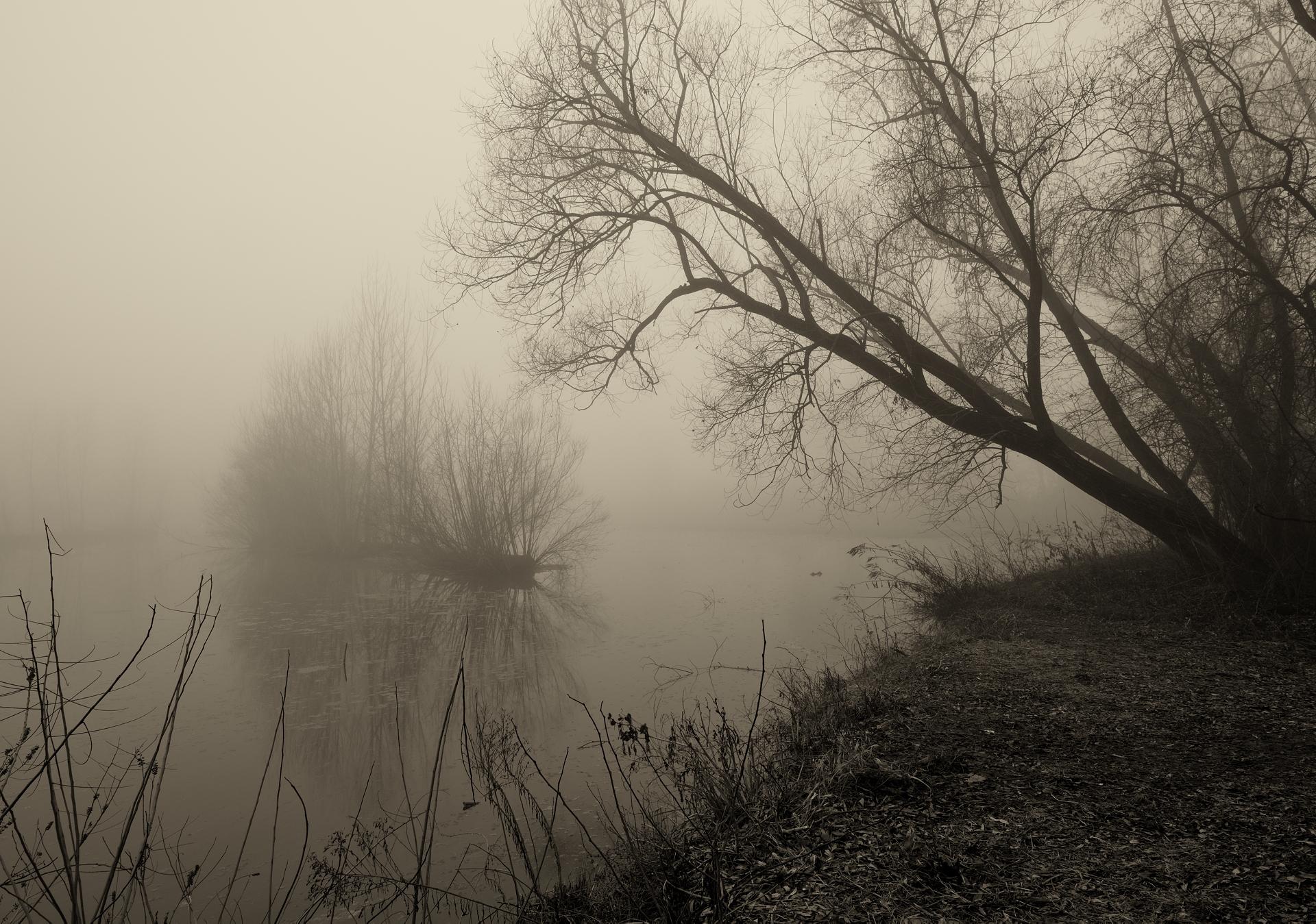 Winter 2...