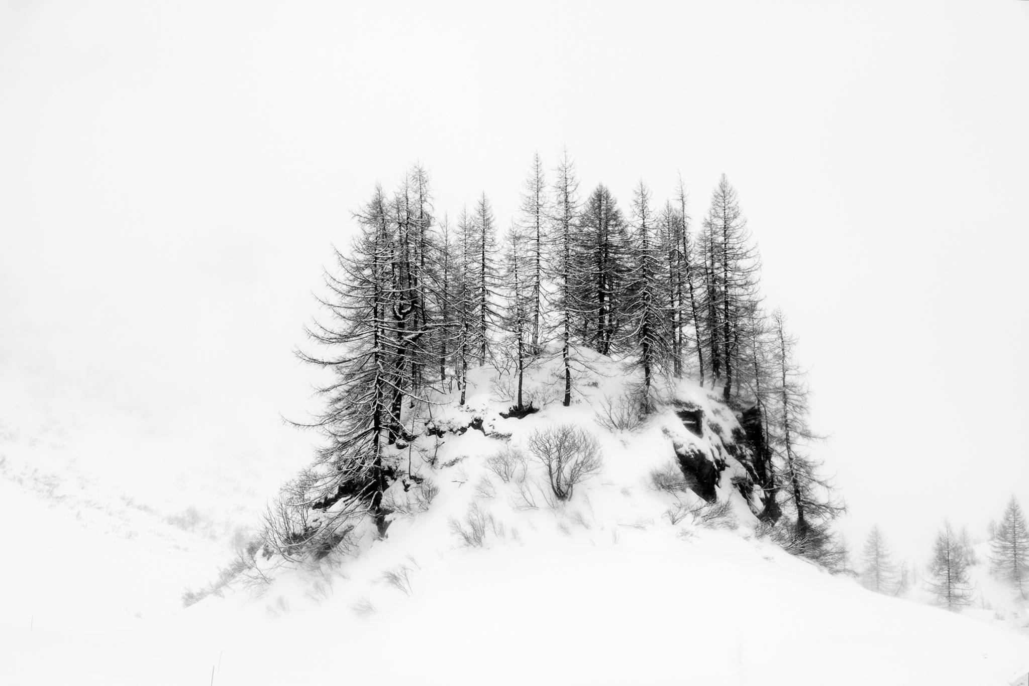 Il bianco della neve...