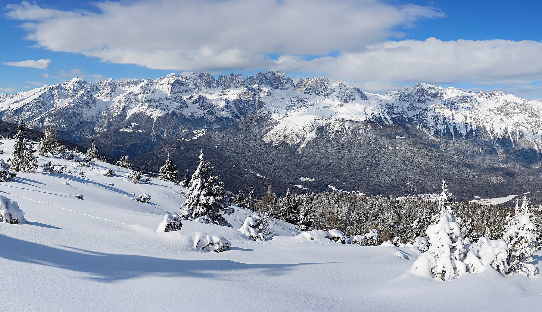 Snowy Brenta...