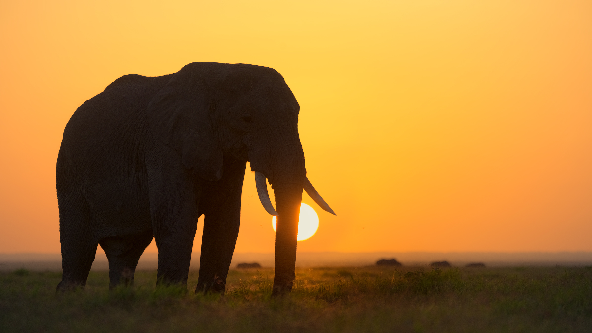 A new day in Africa...