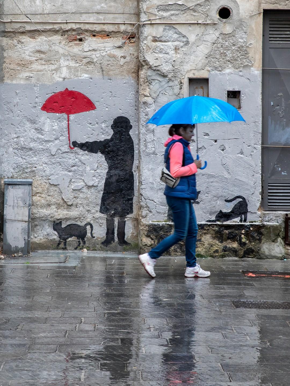 Piove, la gatta non si muove !...