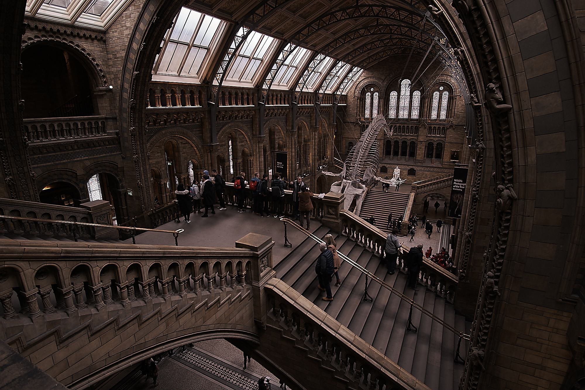 Natural History Museum...