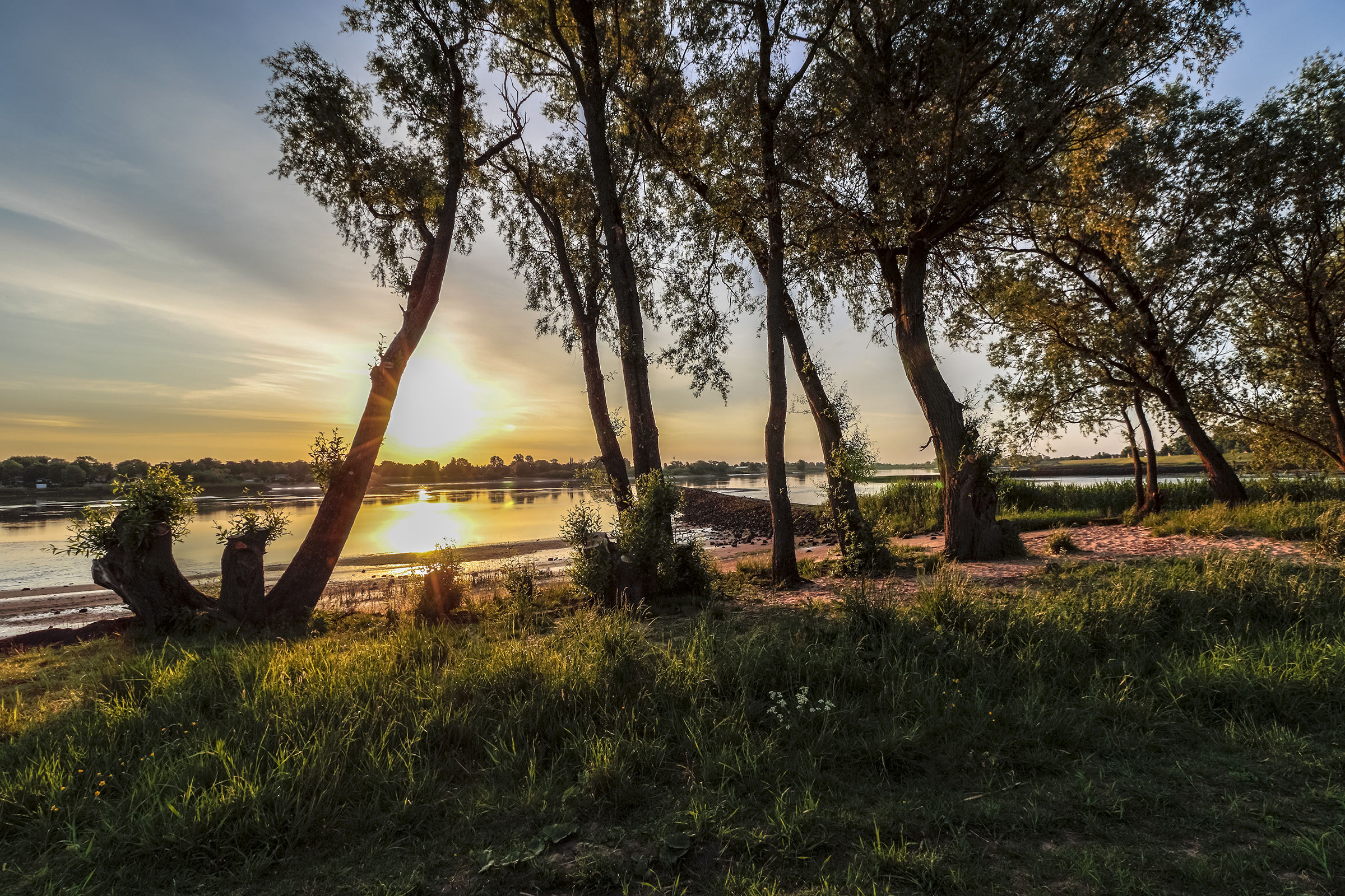 Elbe in Sunset...