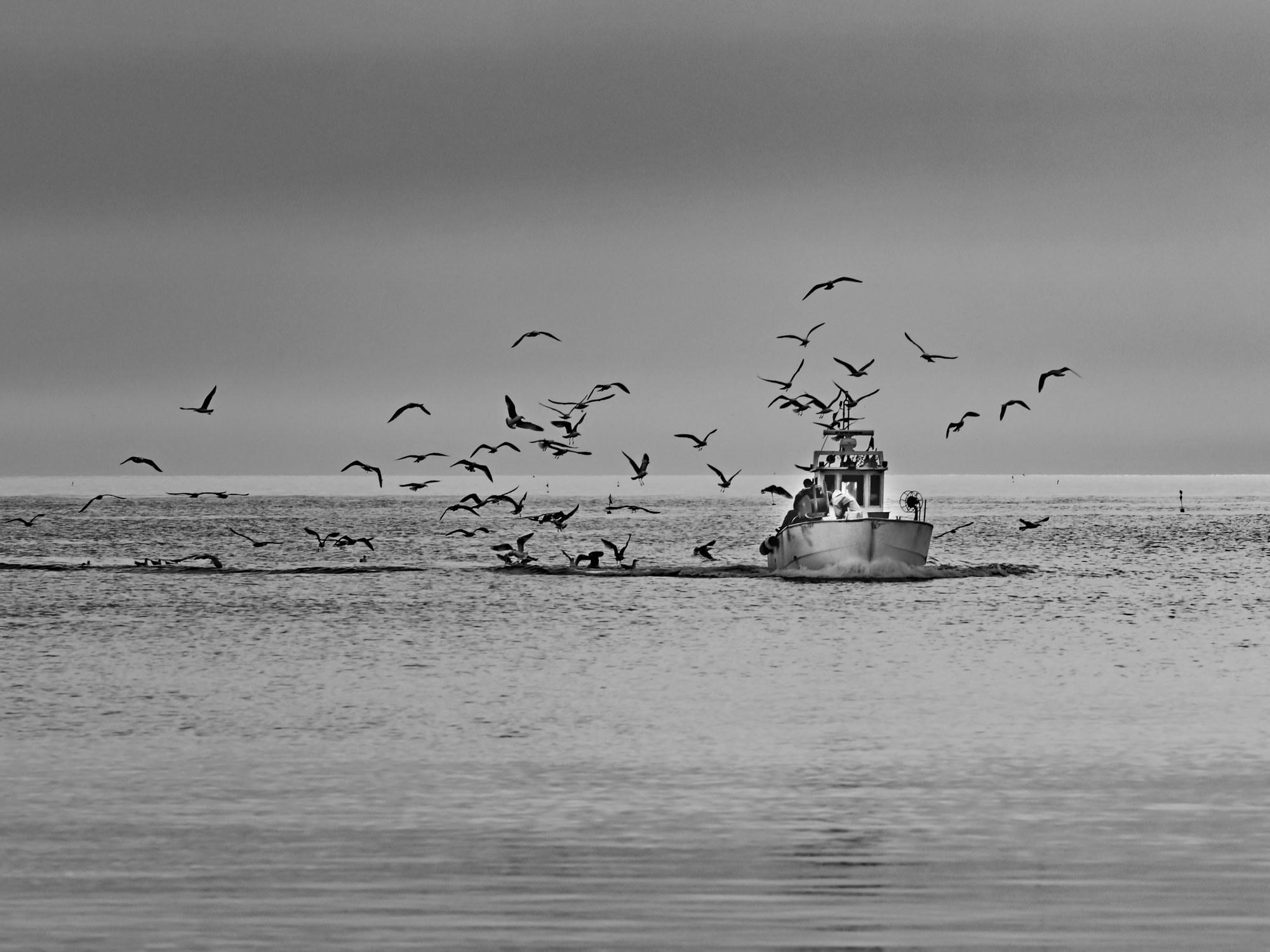 Return from fishing...