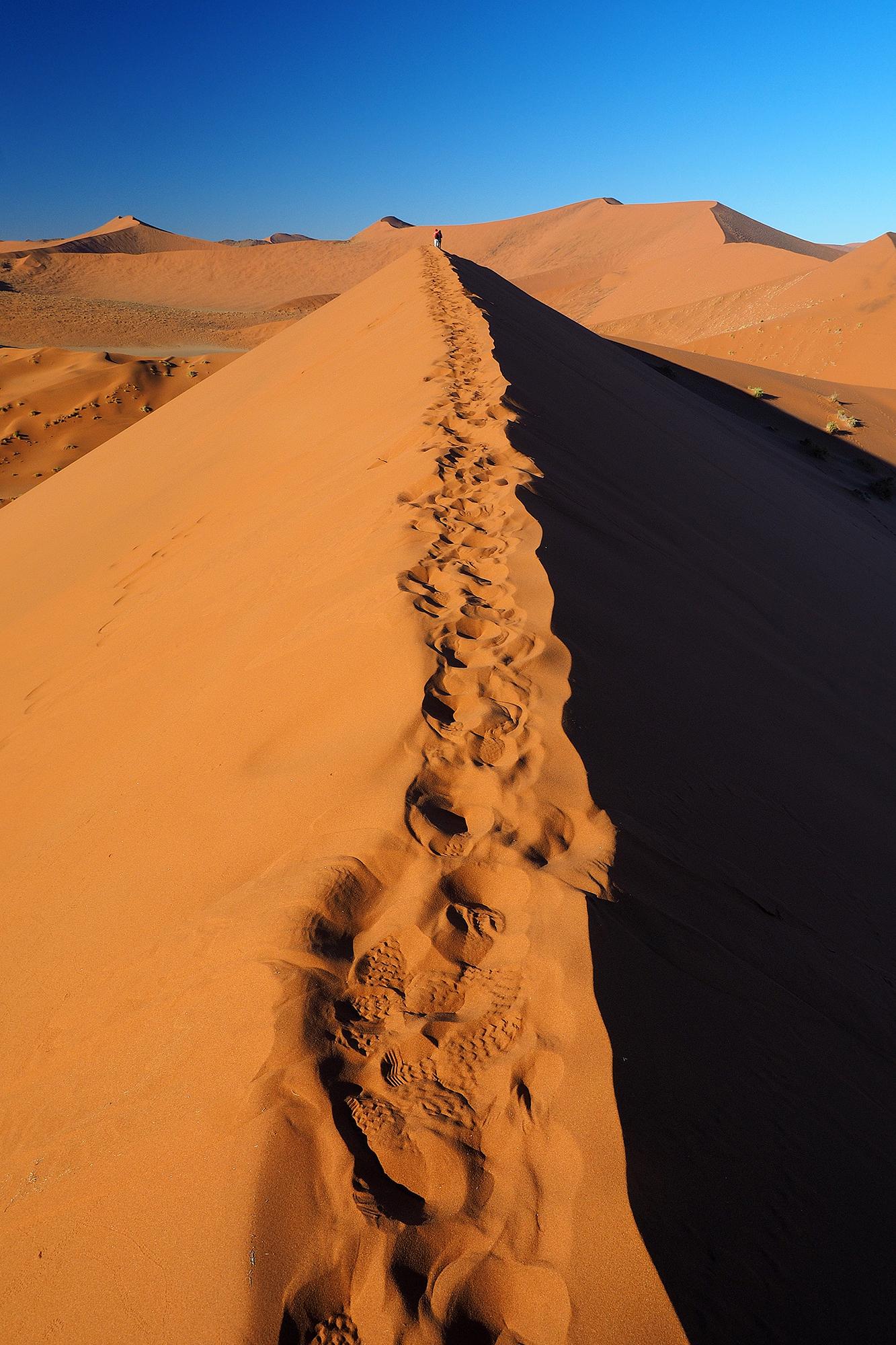 dune 2...