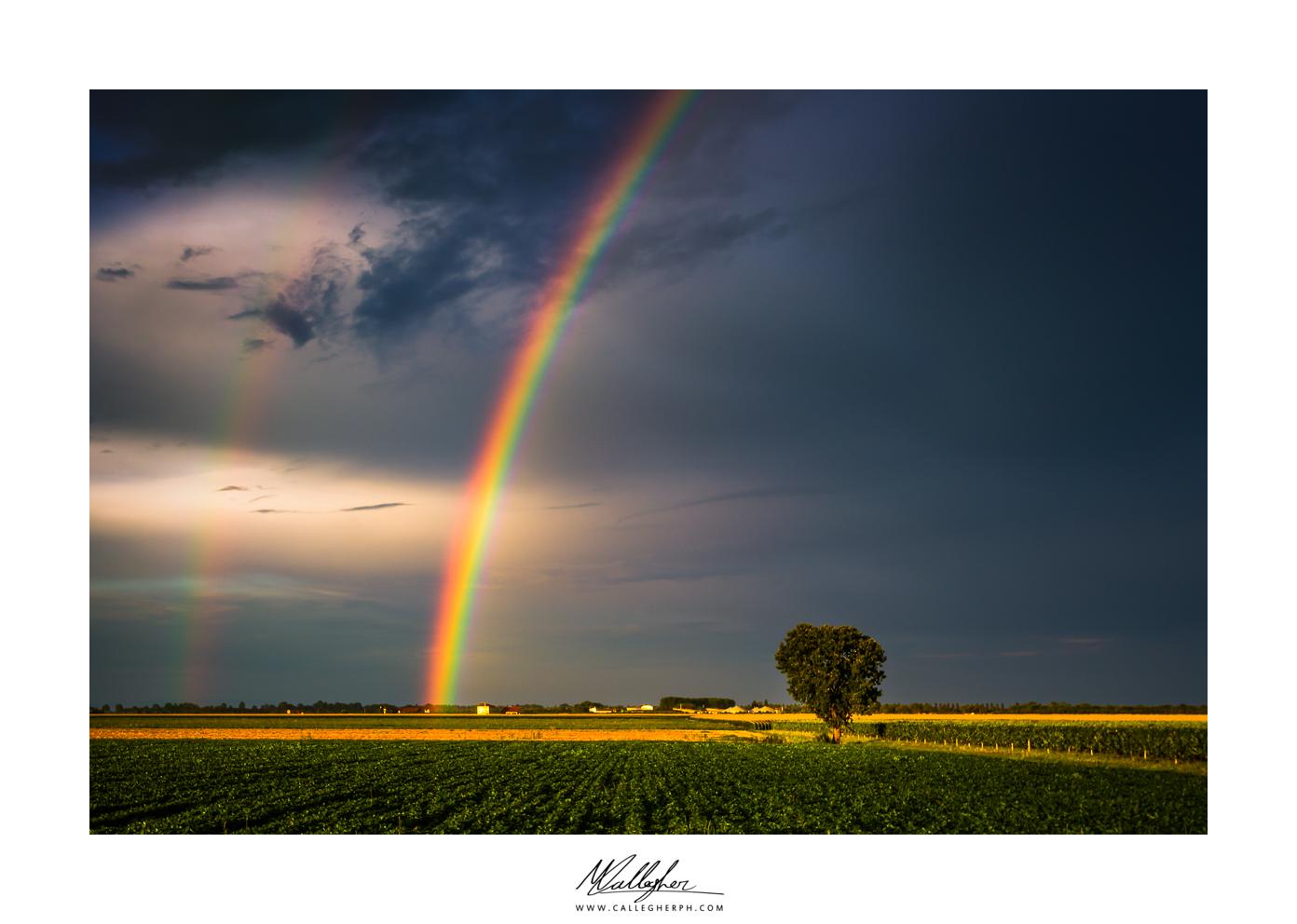 A Rainbow in the Dark...