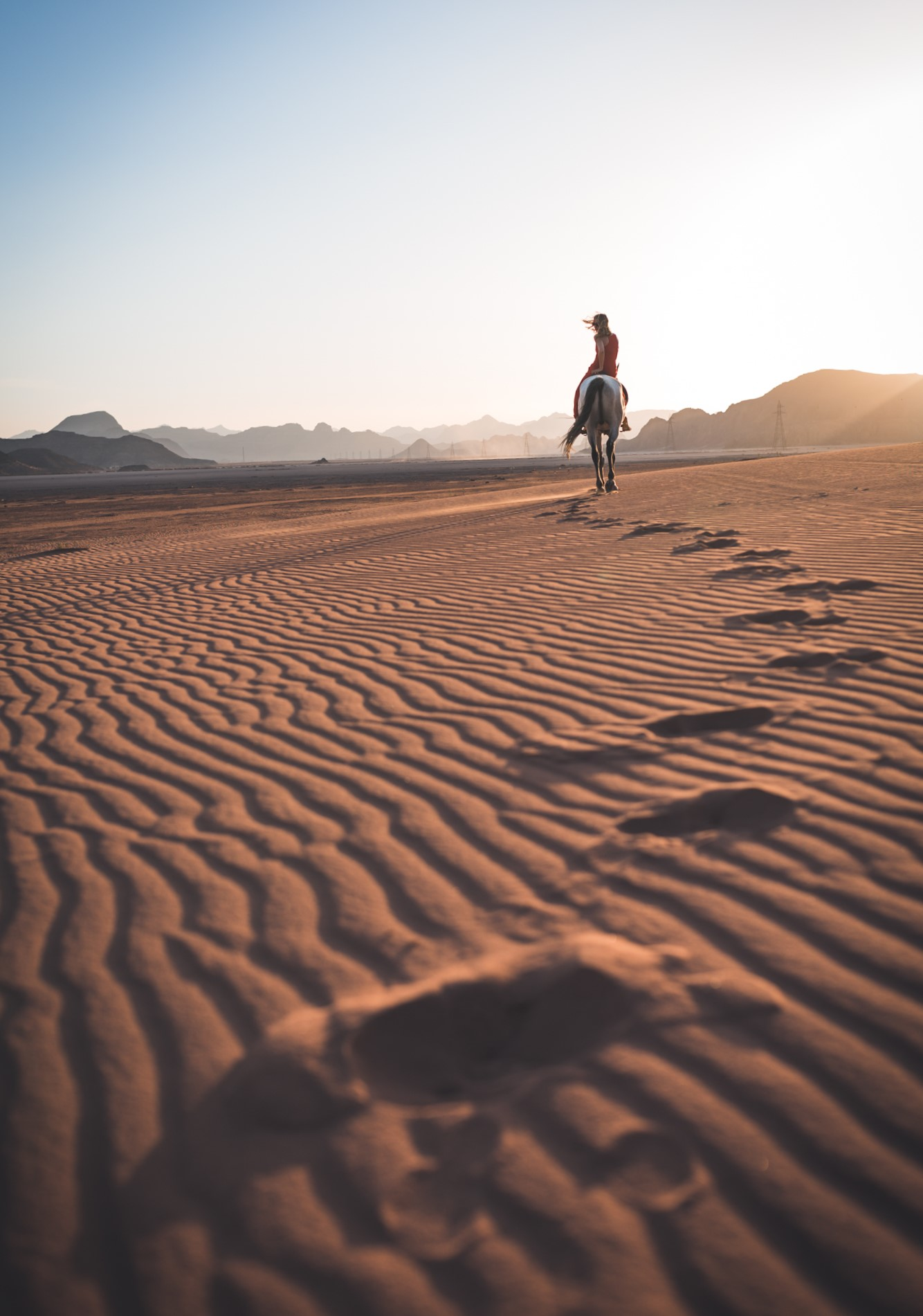 The footsteps of the desert...