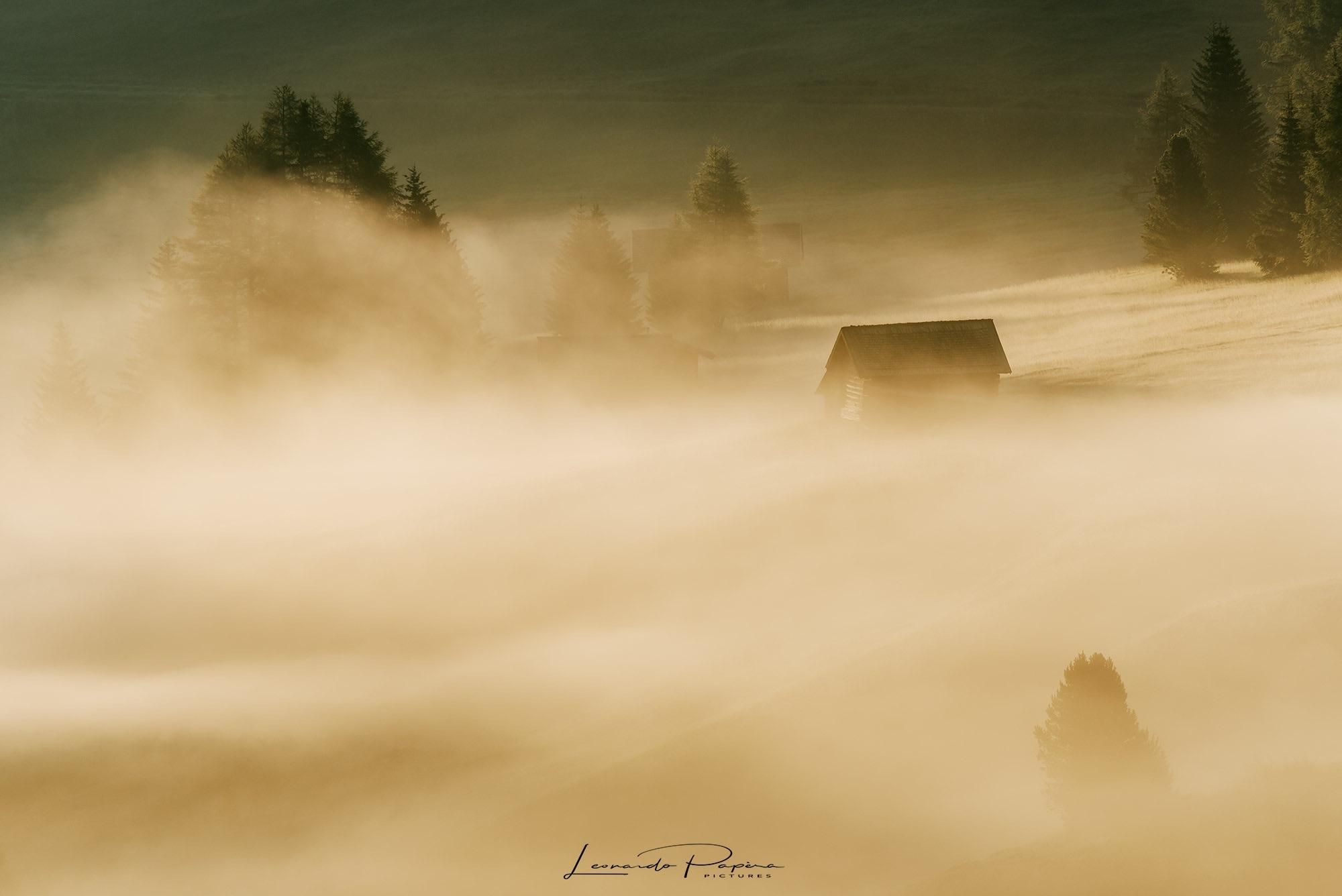 Drowning in Fog...