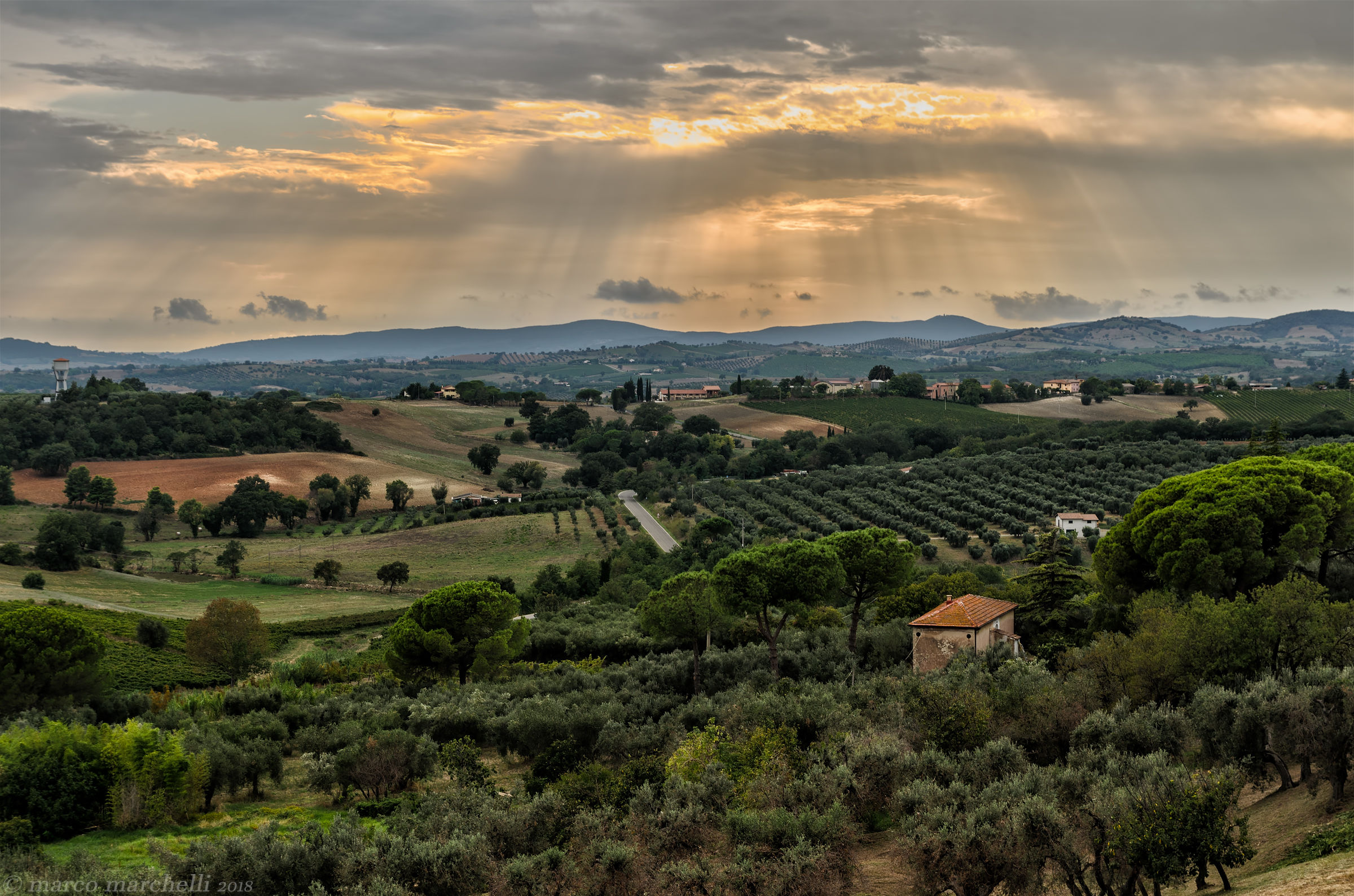 Magliano in Tuscany...