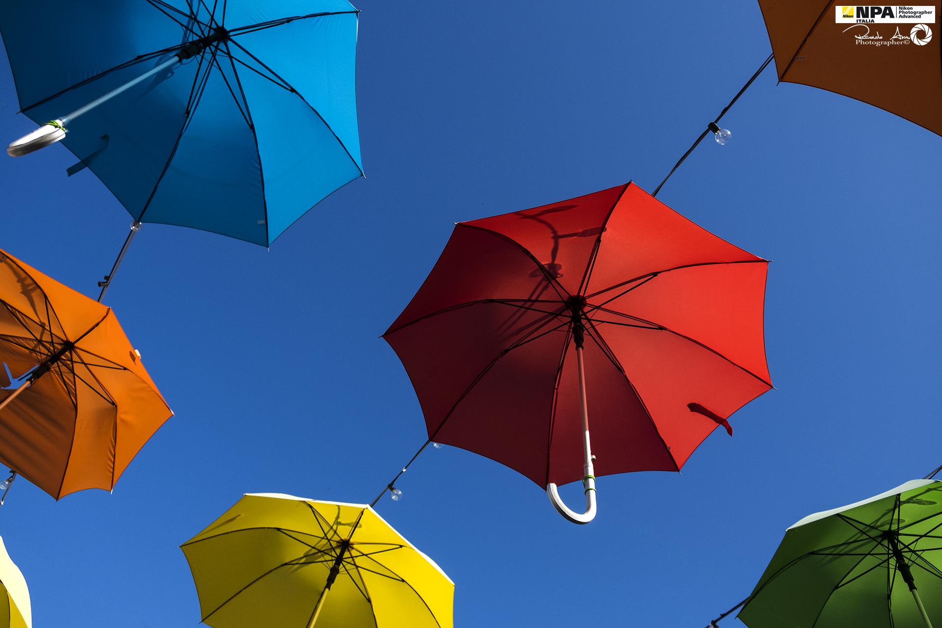 Umbrellas & Colors...